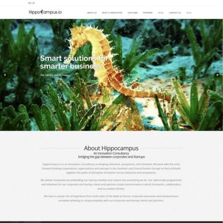 hippocampus.io